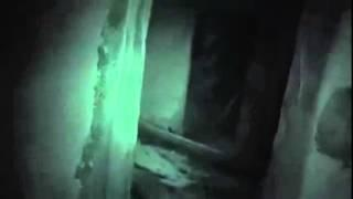 G.I.P.S.I. Files - Shadow Person Appears at 24 seconds.  Look in the box.