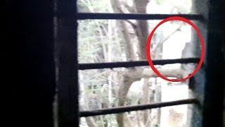 GHOST ENTITY CAUGHT ON TAPE?? BLACK GHOST CAUGHT ON CAMERA