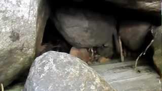 "Bear River Reservoir - Part 2 ""Strange Hidden Den"""
