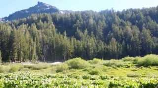 "Noble & Bull Lake - Part 31 ""Tryon Peak Meadows"""