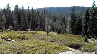 "Bear River Reservoir - Part 7 ""Sea Of Sugar Pines"""