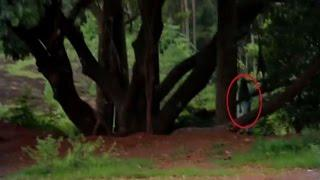 Real Ghost Sightings | Ghost Caught On Tape | Paranormal Activity | Scary Videos | Ghost Videos