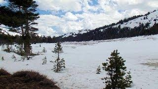 """Showers Lake - Part 15 """"Scouring The North Icy Shore For Tracks"""""""