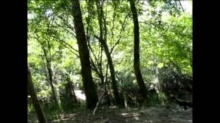 Another Overnighter On The South River Part 12 The Final Part