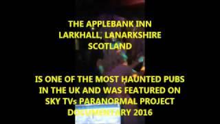 Adults Halloween Party 2016 at the Applebank Inn