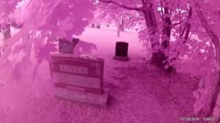 Child ghosts lost in the Cemetery