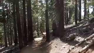 "D.L. Bliss State Parks Rubicon Trail - Part 11 ""The Birds and The Bees With Lord Rick"""