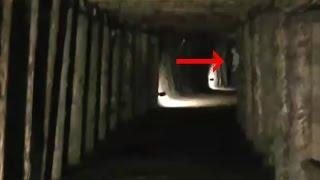 5 Scariest Creatures Caught On Camera & Spotted In Real Life