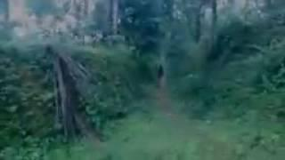 Scary ghost   Two Ghosts Caught On Camera From A Haunted Place   A shocking video footage   YouTube