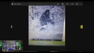 Bigfoot in the Sierra's! Paranormal Central™ August 23, 2015