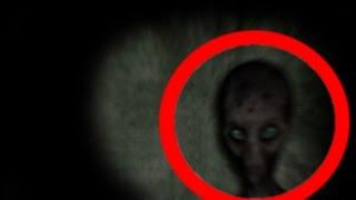 TOP 5 STRANGE CREATURES CAUGHT ON CAMERA / TOP 5 extrañas criaturas captado por la cámara