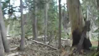 """Highland Lakes - Part 40 """"A Primitive Journey"""""""