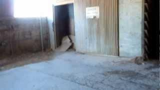 """Luning Artinite & Magnesium Mill and Warehouse - Part 4 """"Inside The Fortress"""""""