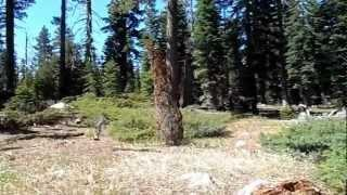 """Bear River Reservoir - Part 5 """"Things Are Getting VERY Hairy"""""""