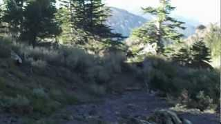 "Mount Raymond -  Part 31 ""Strange Handprint Discovery"""