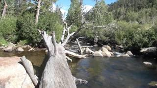 "Camp Kit Carson Part 8 ""Enjoying The Carson River"""