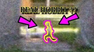 Real Troll Elf Hobbit Creature CAUGHT on Video, Monsters In Real Life 2016