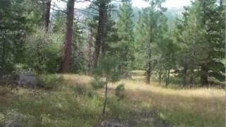"""Kongsberg Part 16 """"Hidden Meadow"""""""